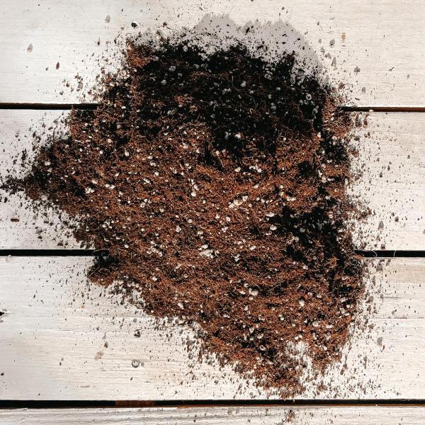 تربة زراعة البذور - ٢ لتر